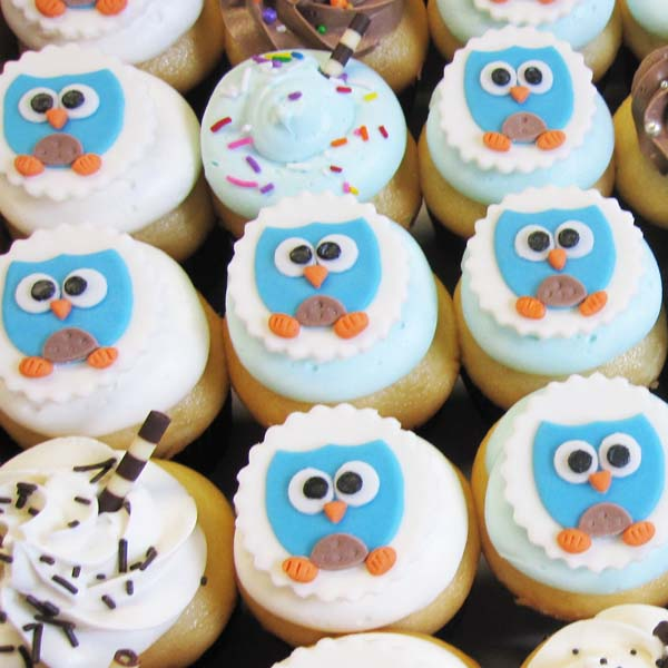 Owl Cupcakes For Baby Shower: Owl Cupcakes Toronto
